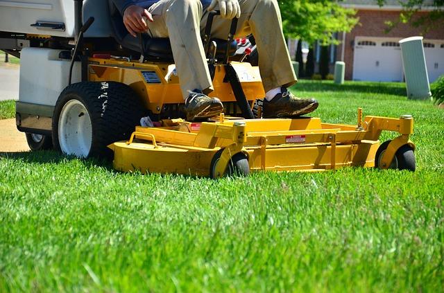 Profesjonalna firma która dba o trawnik